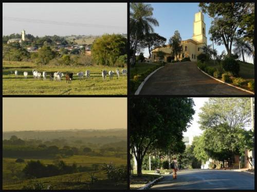 Alfredo Marcondes São Paulo fonte: www.alfredomarcondes.sp.gov.br